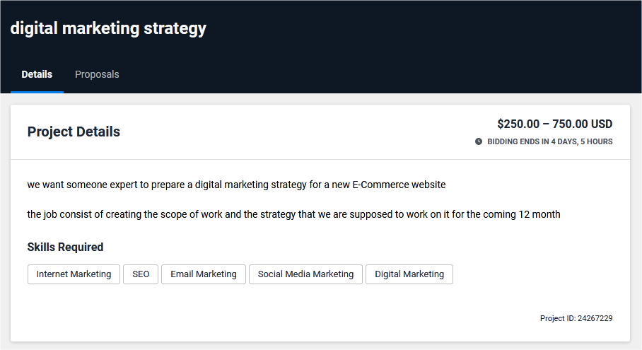 Digital Marketing & SMM Proposal Sample for Freelancer
