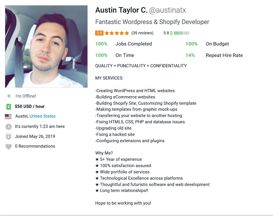 Freelancer Profile Summary Sample for WordPress Developer